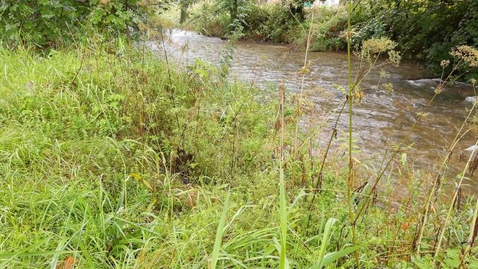 Fluss Walster Rechengraben